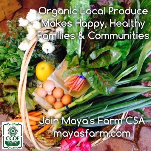 Maya's Farm CSA